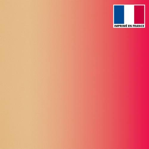 Lycra imprimé dégradé chair et rose