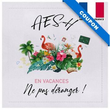 Coupon 45x45 cm toile canvas AESH en vacances