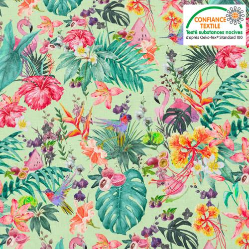Coton vert pistache motif fruit tropical Oeko-tex