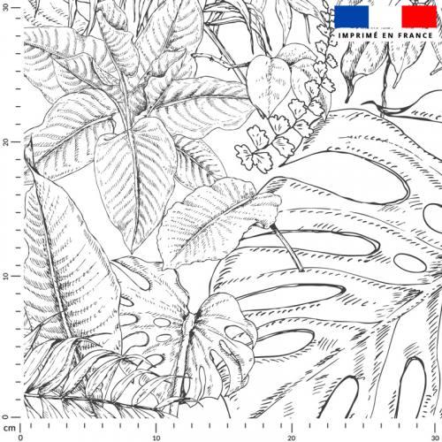 Jungle dessin - Fond écru