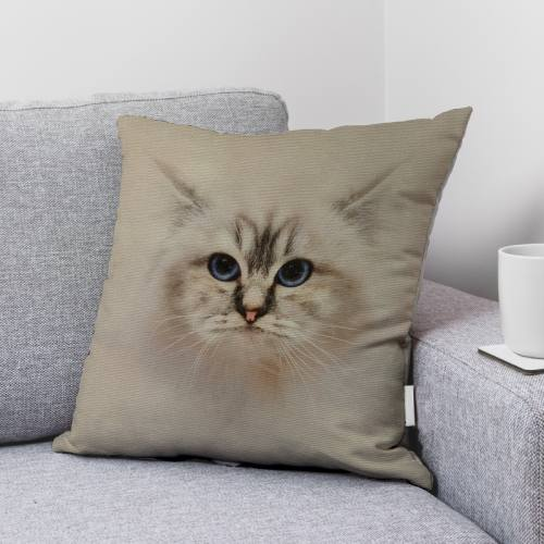 Coupon 45x45 cm écru motif chat Ragdoll