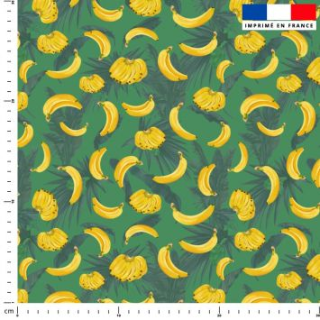 Grappe de bananes - Fond vert mousse