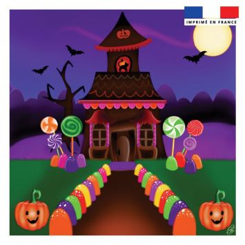 Coupon 45x45 cm motif maison d'halloween - Création Créasan'