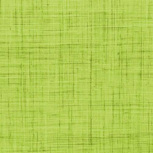 Coton aspect lin anis