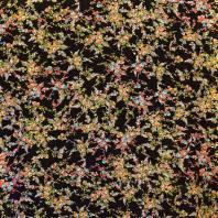 Tissu microfibre noir imprimé champêtre